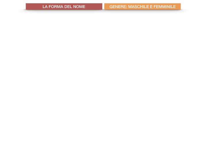 7.1.GRAMMATICA_NOMI_FORMA_GENERE_SIMULAZIONE.011