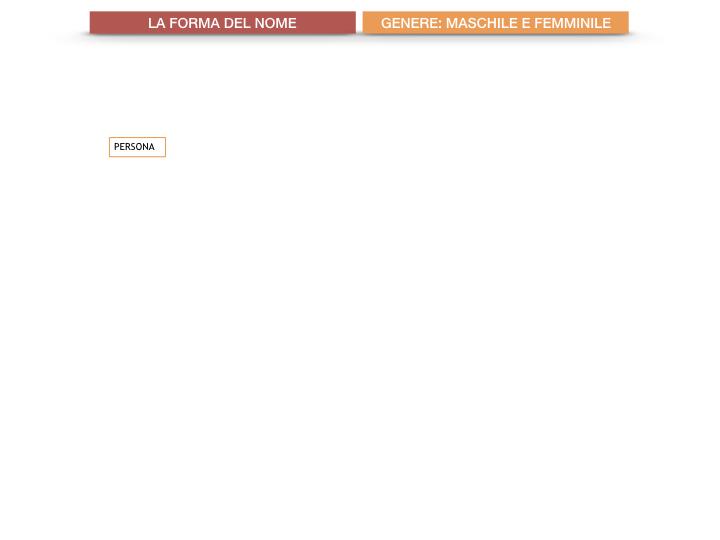 7.1.GRAMMATICA_NOMI_FORMA_GENERE_SIMULAZIONE.012