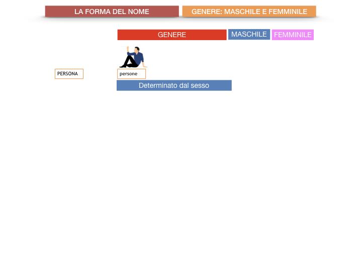 7.1.GRAMMATICA_NOMI_FORMA_GENERE_SIMULAZIONE.015