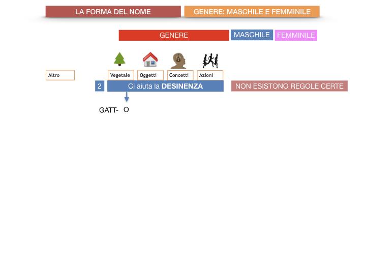 7.1.GRAMMATICA_NOMI_FORMA_GENERE_SIMULAZIONE.031