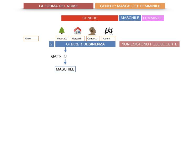 7.1.GRAMMATICA_NOMI_FORMA_GENERE_SIMULAZIONE.032