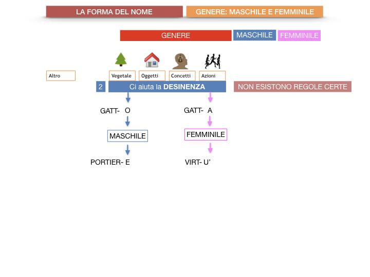 7.1.GRAMMATICA_NOMI_FORMA_GENERE_SIMULAZIONE.035