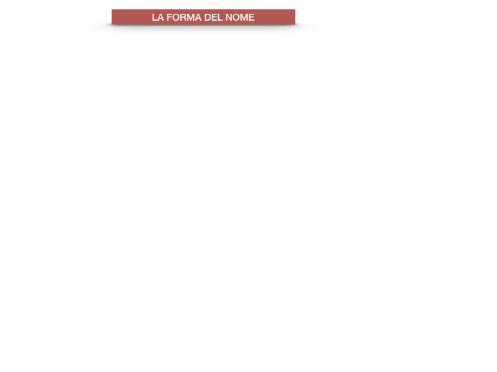 7.1.GRAMMATICA_NOMI_FORMA_GENERE_SIMULAZIONE.044