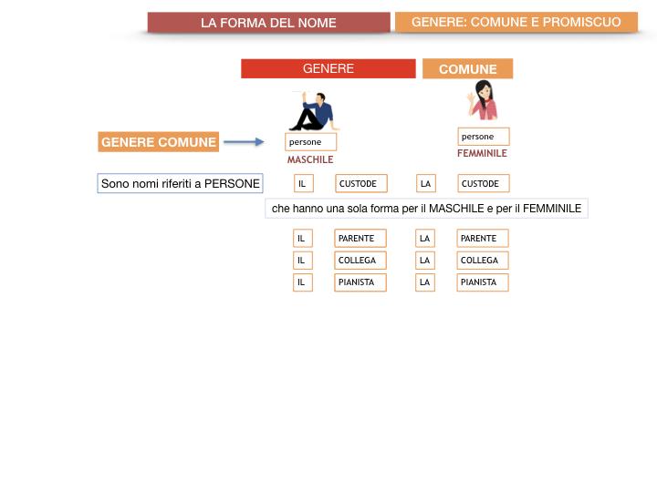 7.1.GRAMMATICA_NOMI_FORMA_GENERE_SIMULAZIONE.056