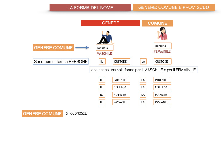 7.1.GRAMMATICA_NOMI_FORMA_GENERE_SIMULAZIONE.058