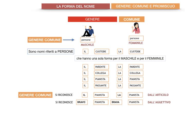 7.1.GRAMMATICA_NOMI_FORMA_GENERE_SIMULAZIONE.063