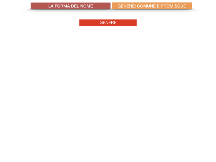 7.1.GRAMMATICA_NOMI_FORMA_GENERE_SIMULAZIONE.070