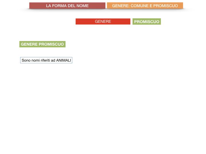 7.1.GRAMMATICA_NOMI_FORMA_GENERE_SIMULAZIONE.072