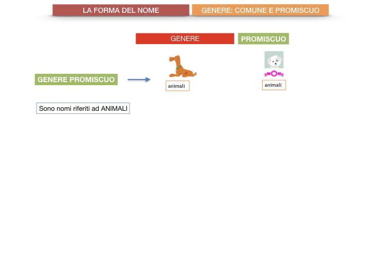 7.1.GRAMMATICA_NOMI_FORMA_GENERE_SIMULAZIONE.073