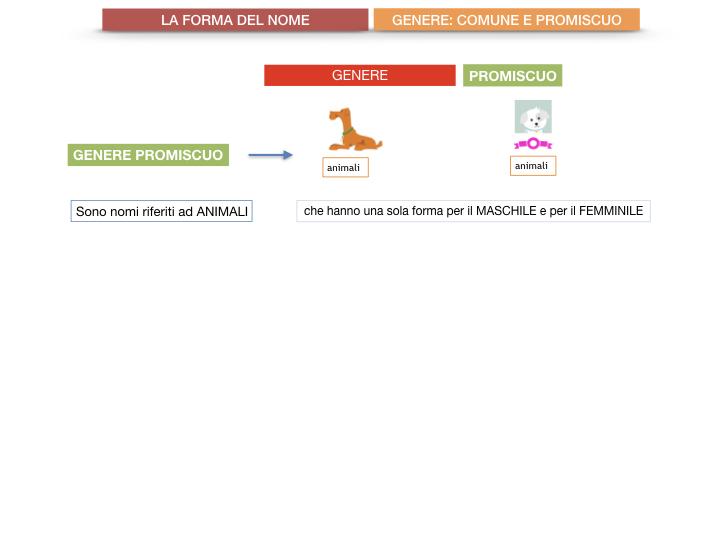 7.1.GRAMMATICA_NOMI_FORMA_GENERE_SIMULAZIONE.074