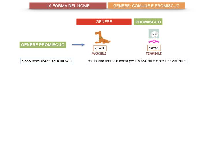 7.1.GRAMMATICA_NOMI_FORMA_GENERE_SIMULAZIONE.076