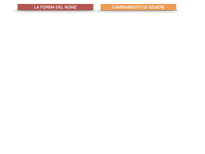 7.1.GRAMMATICA_NOMI_FORMA_GENERE_SIMULAZIONE.080