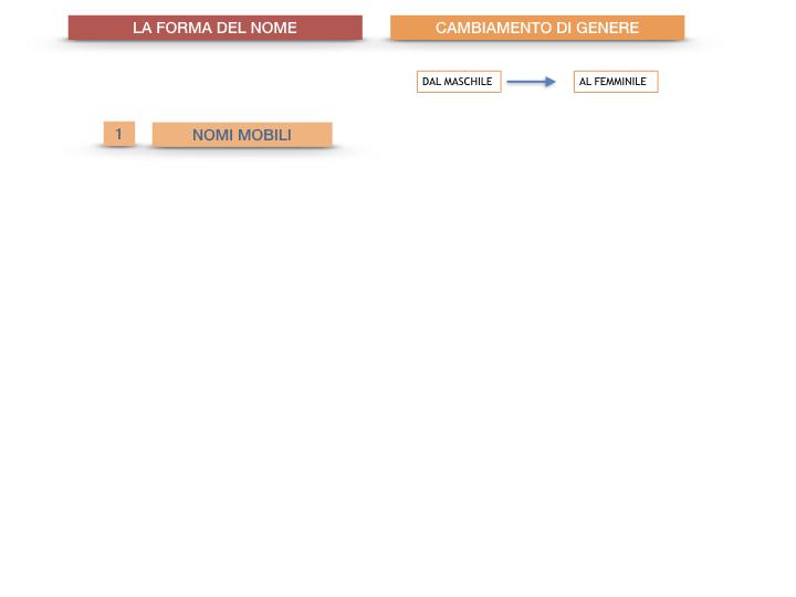 7.1.GRAMMATICA_NOMI_FORMA_GENERE_SIMULAZIONE.082