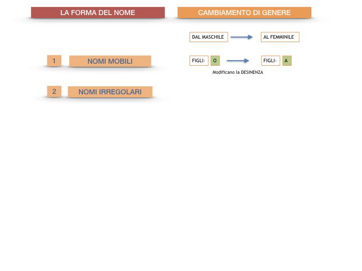 7.1.GRAMMATICA_NOMI_FORMA_GENERE_SIMULAZIONE.085