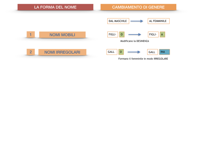 7.1.GRAMMATICA_NOMI_FORMA_GENERE_SIMULAZIONE.087