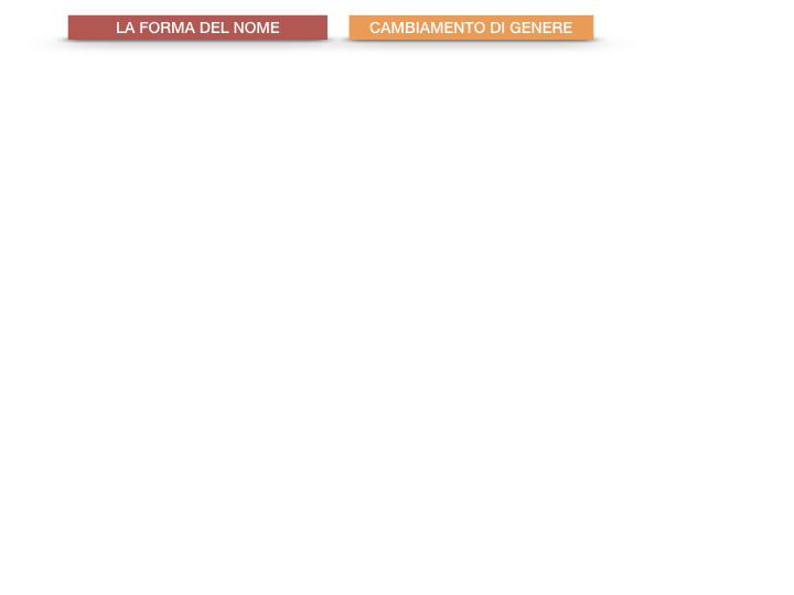 7.1.GRAMMATICA_NOMI_FORMA_GENERE_SIMULAZIONE.091