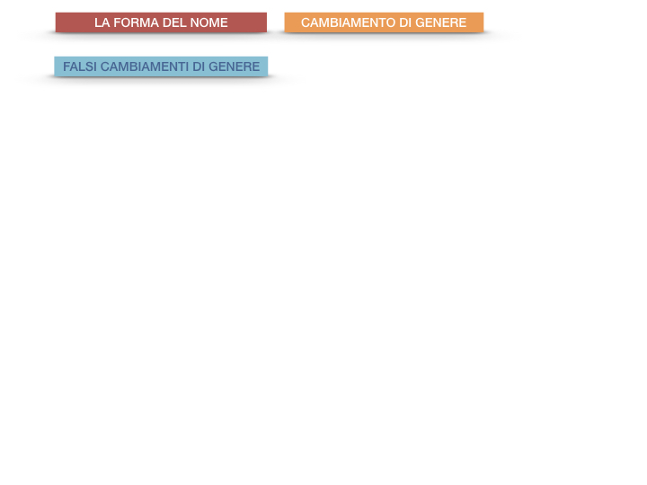 7.1.GRAMMATICA_NOMI_FORMA_GENERE_SIMULAZIONE.092
