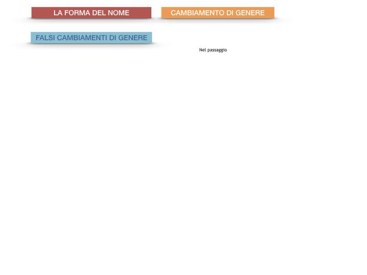 7.1.GRAMMATICA_NOMI_FORMA_GENERE_SIMULAZIONE.093