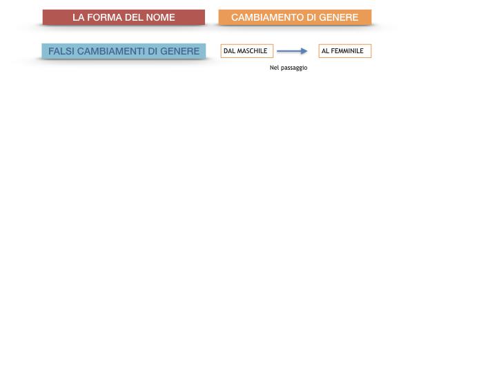 7.1.GRAMMATICA_NOMI_FORMA_GENERE_SIMULAZIONE.095