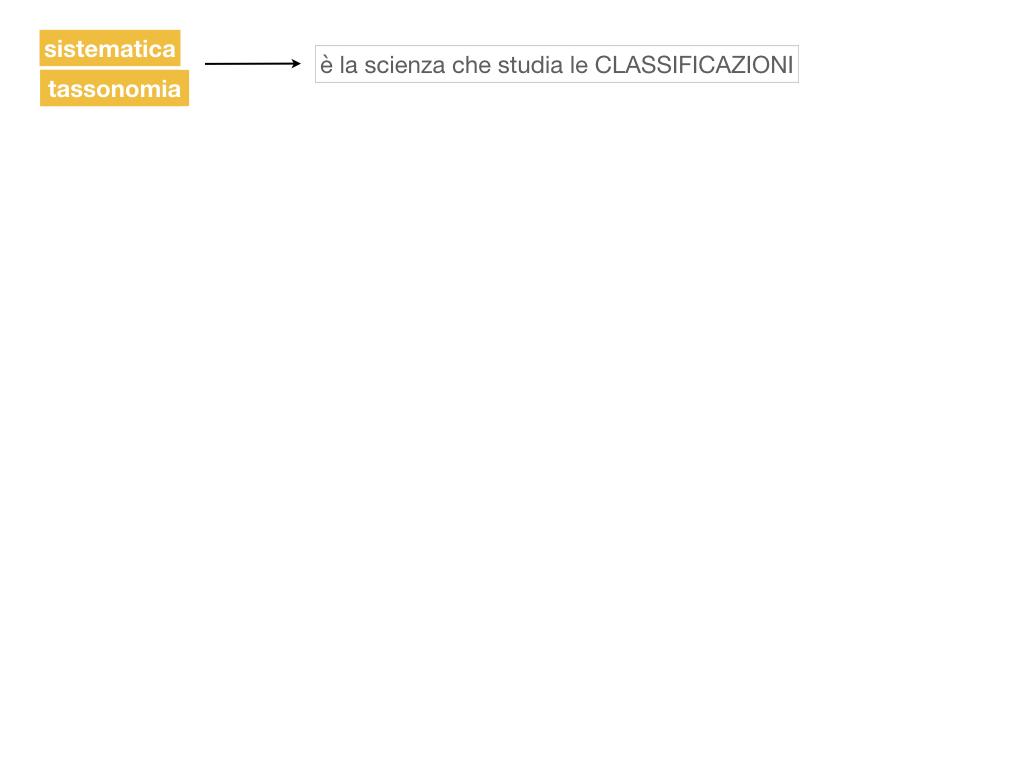classificazione_viventi_SIMULAZIONE.019