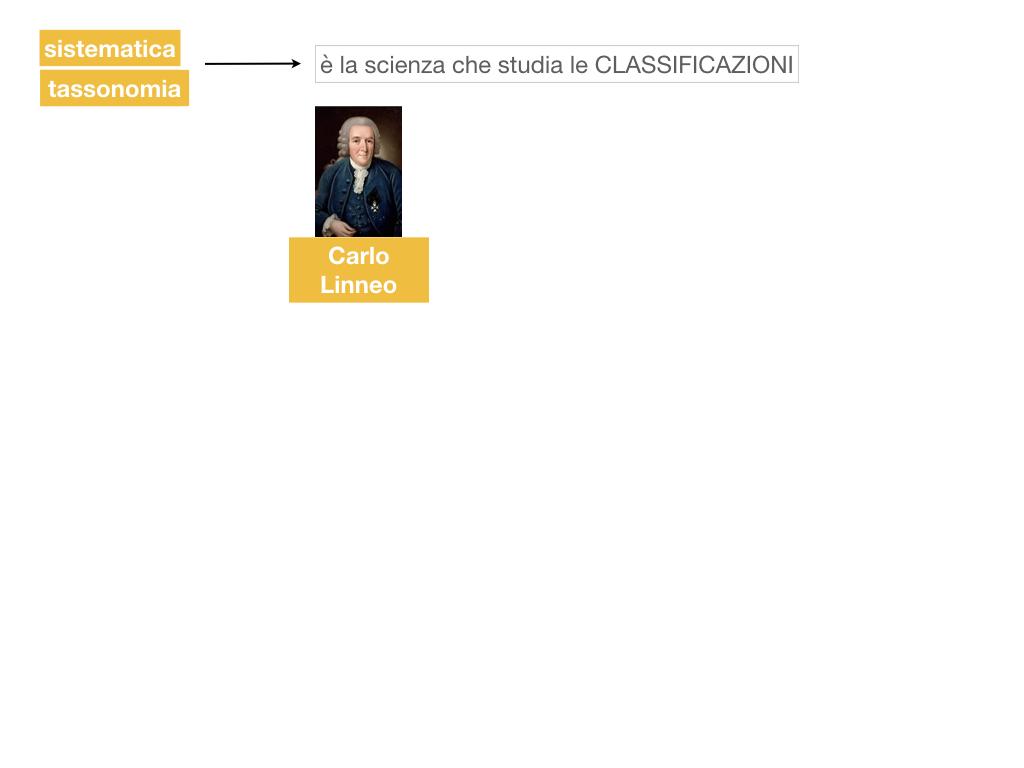 classificazione_viventi_SIMULAZIONE.020