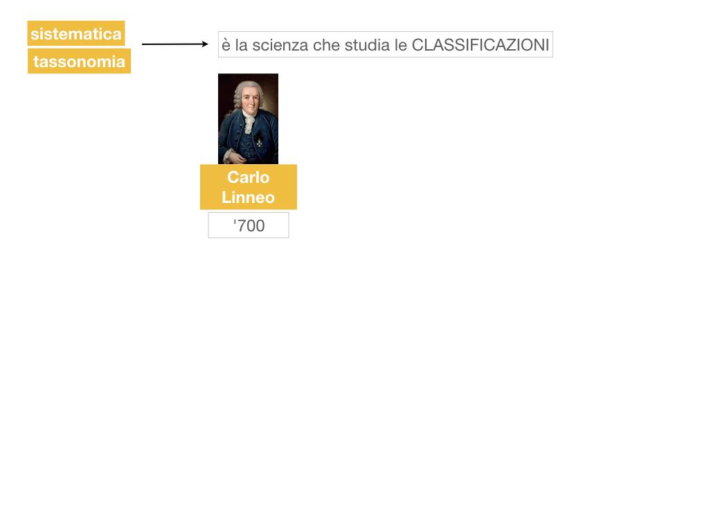 classificazione_viventi_SIMULAZIONE.021