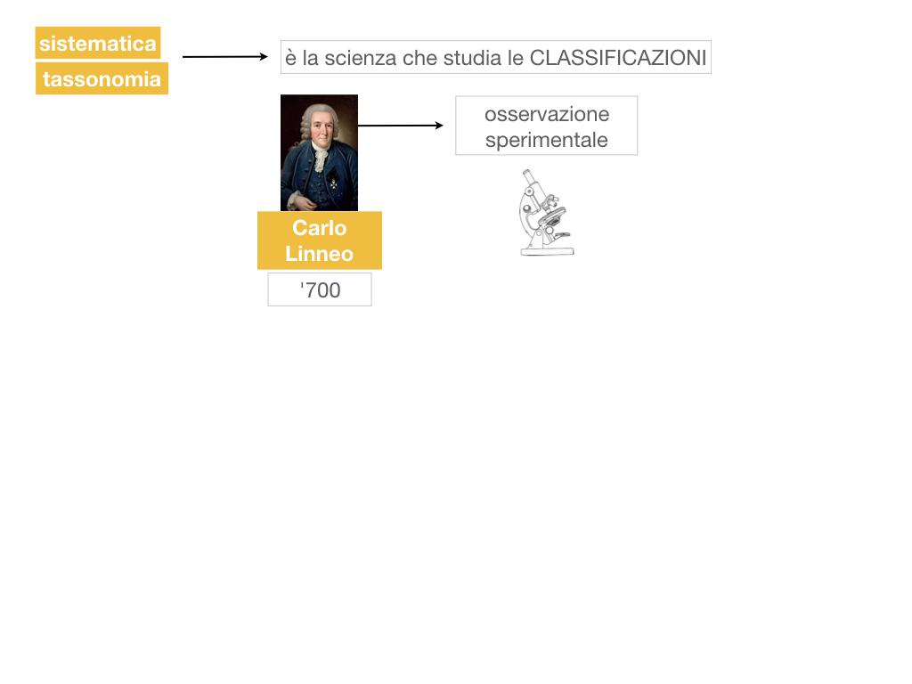 classificazione_viventi_SIMULAZIONE.022