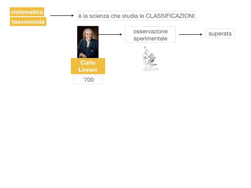 classificazione_viventi_SIMULAZIONE.023