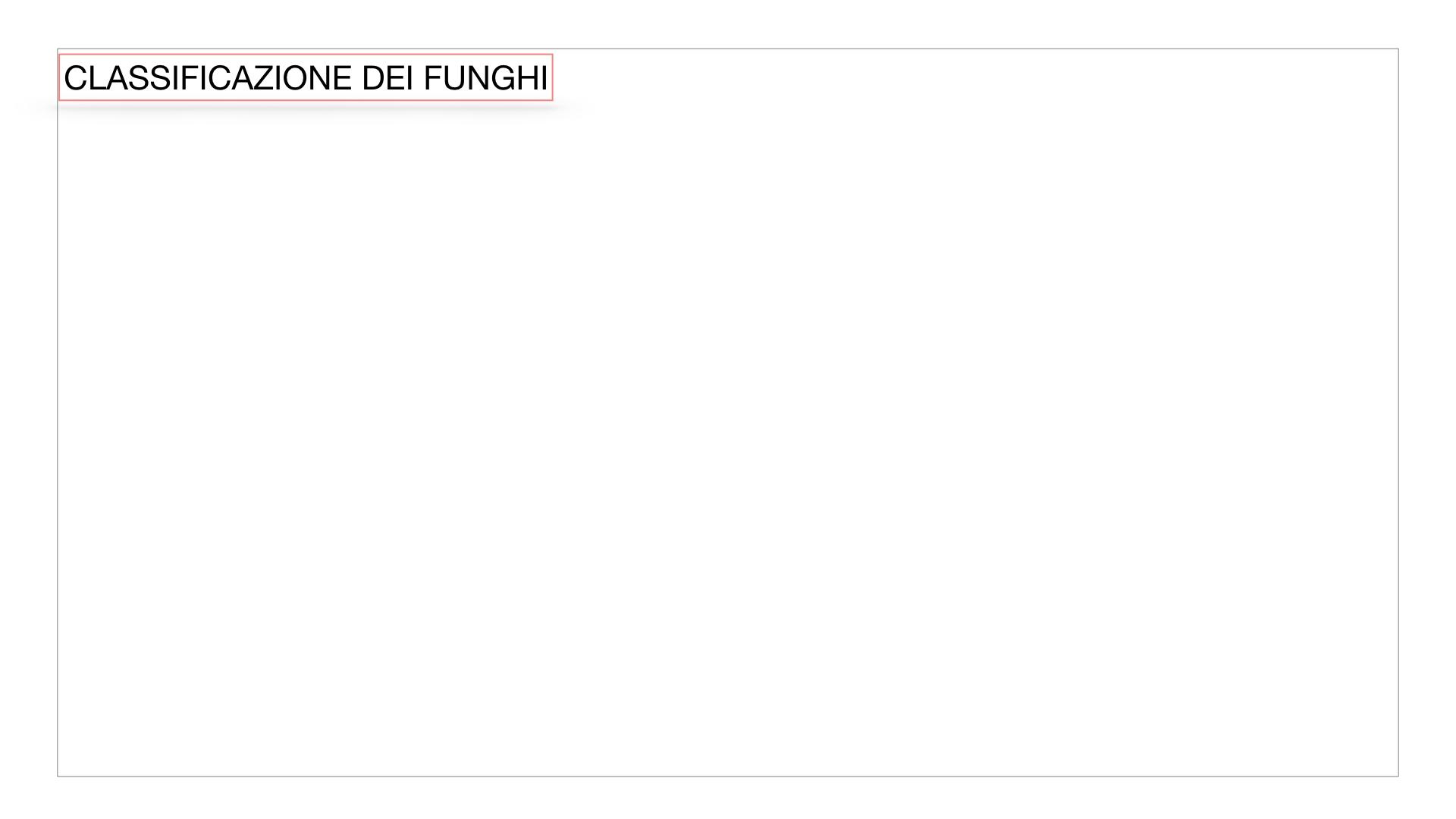 10. i funghi_SIMULAZIONE PARTE2.001
