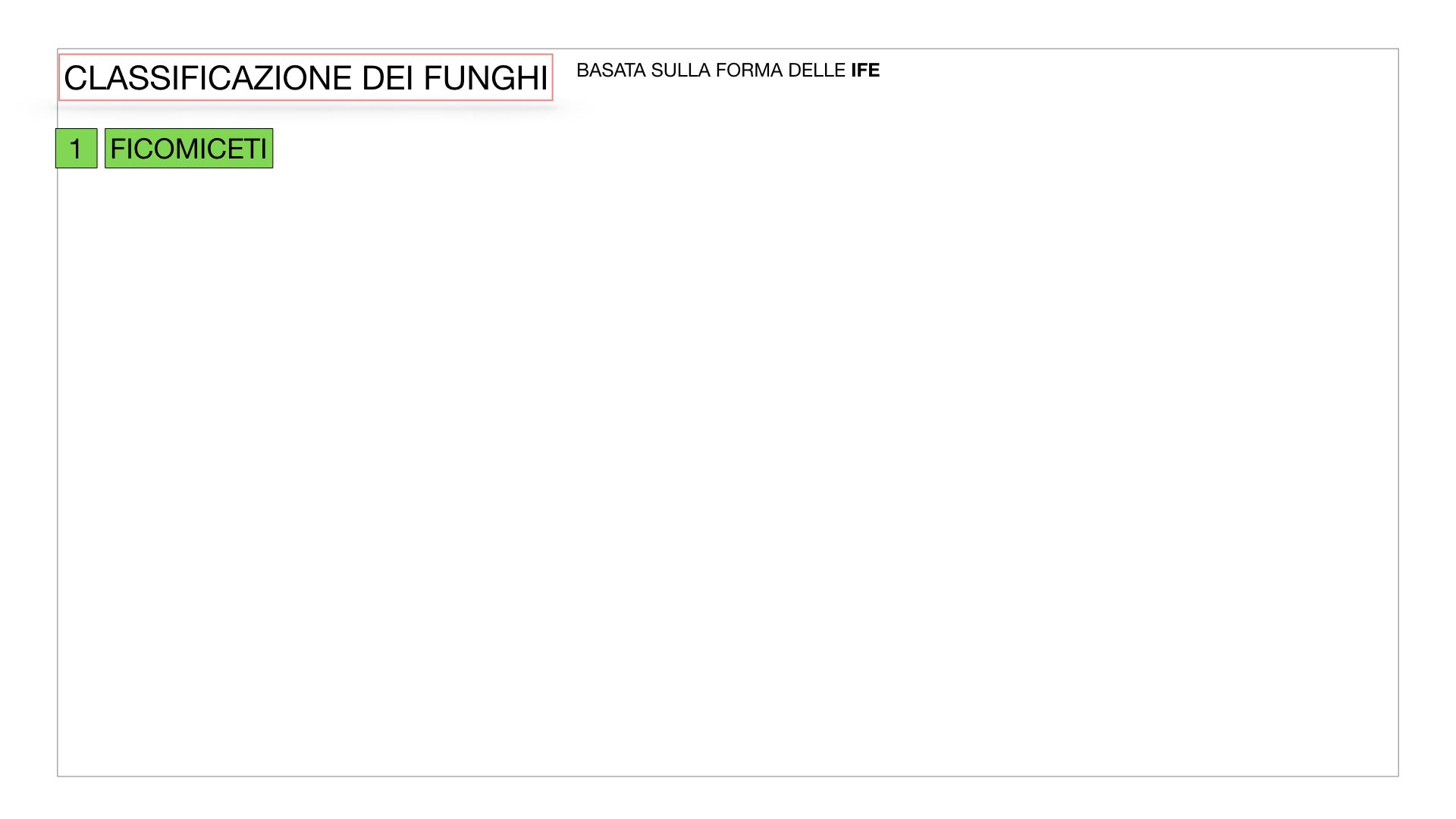 10. i funghi_SIMULAZIONE PARTE2.003