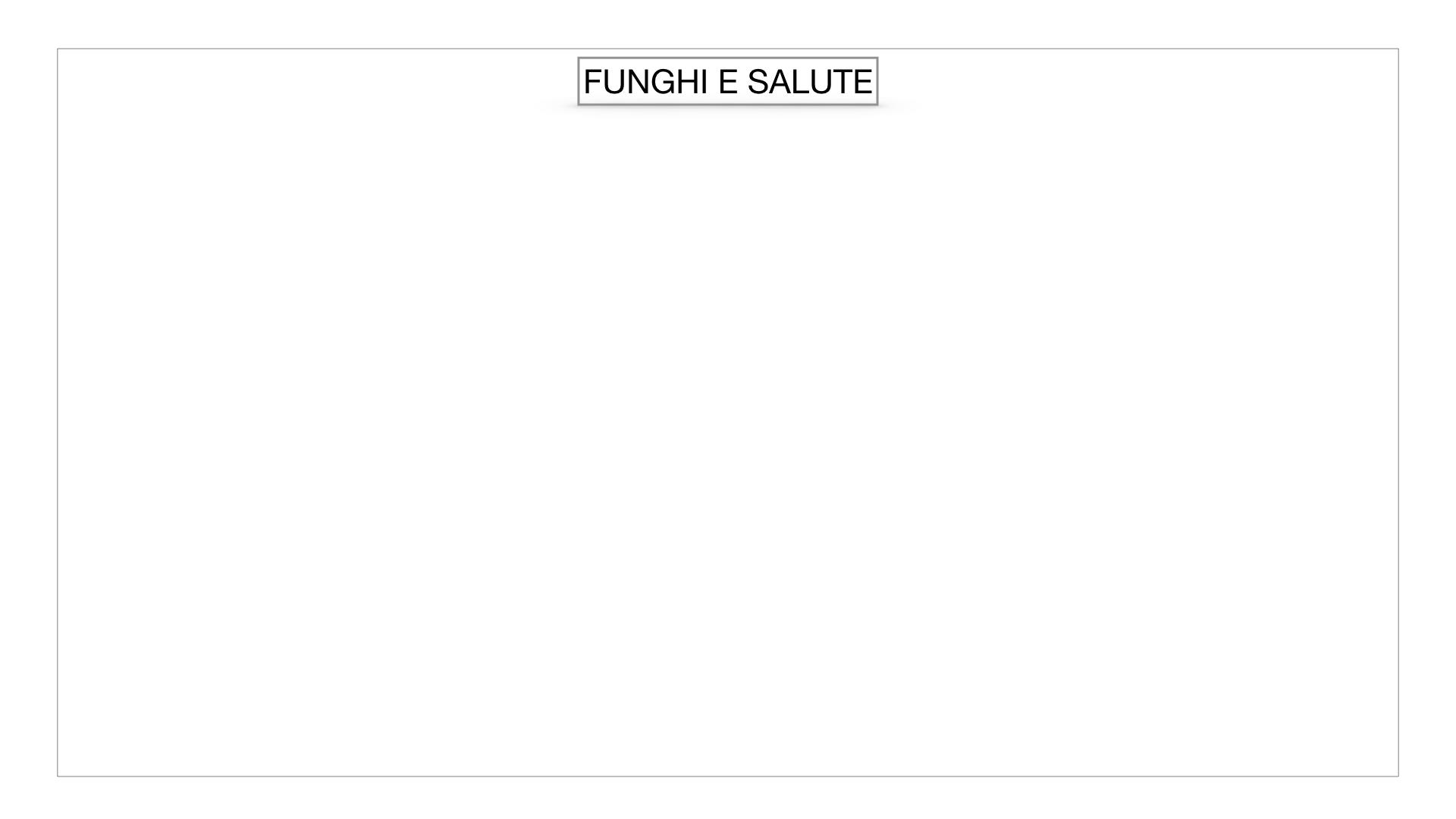 10. i funghi_SIMULAZIONE PARTE2.060