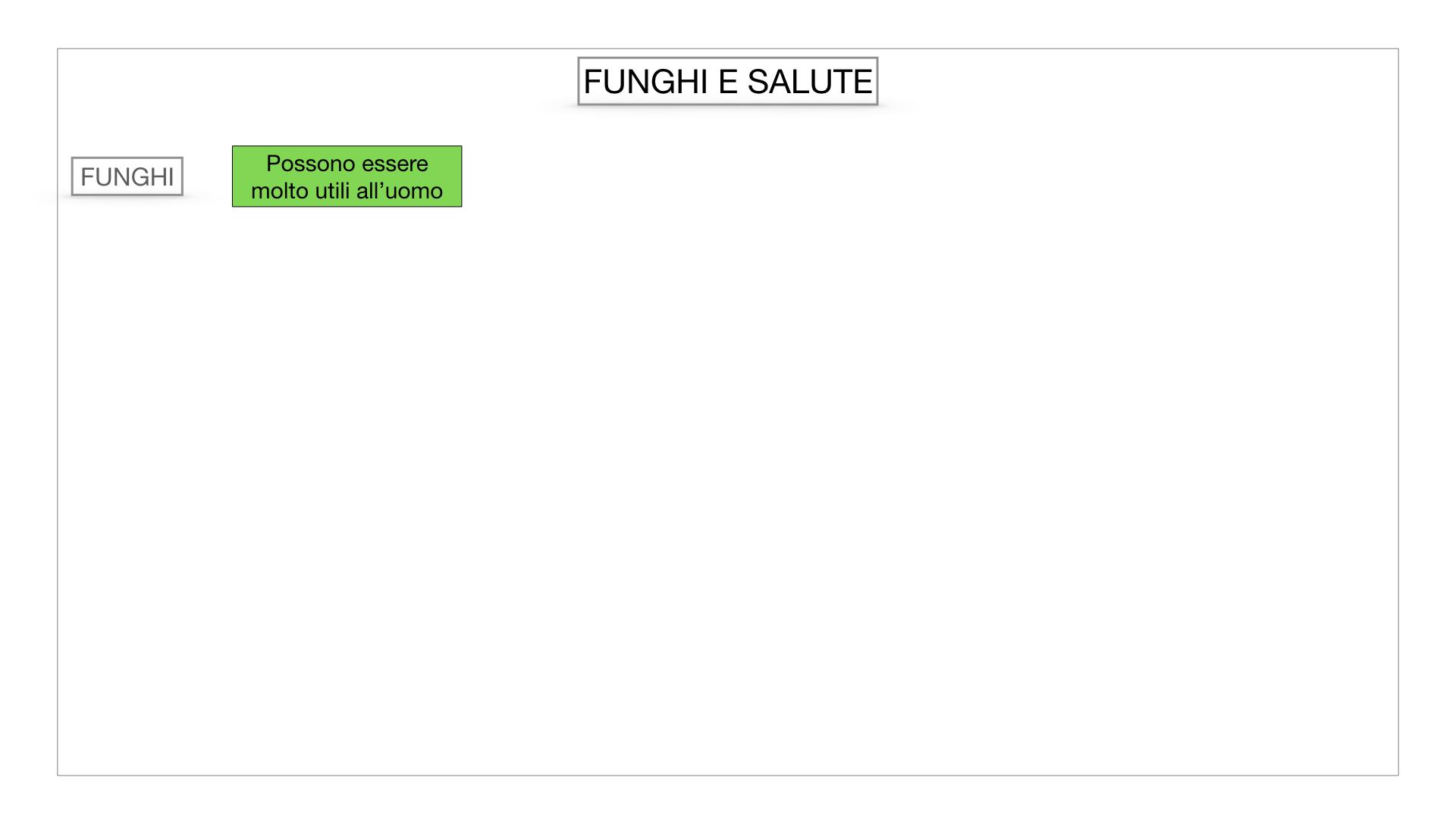 10. i funghi_SIMULAZIONE PARTE2.061