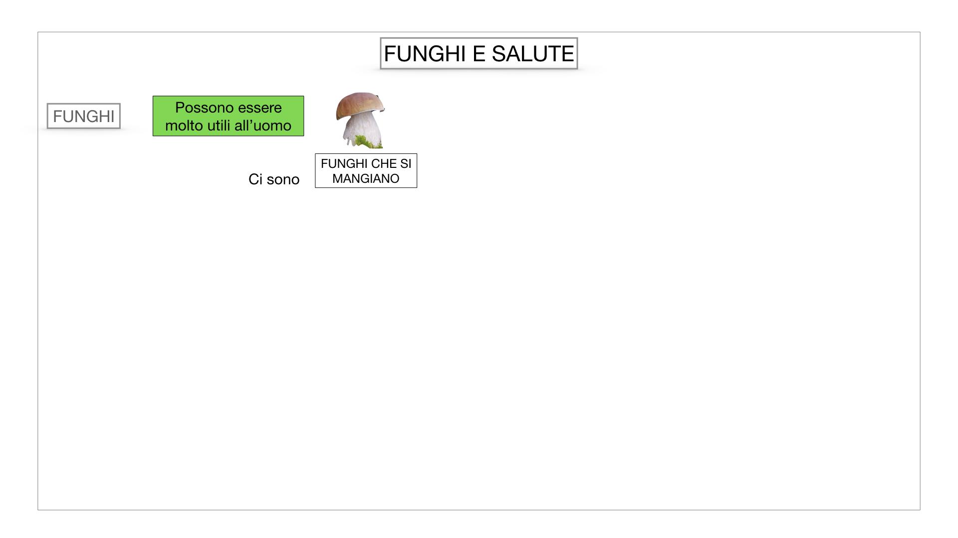 10. i funghi_SIMULAZIONE PARTE2.062