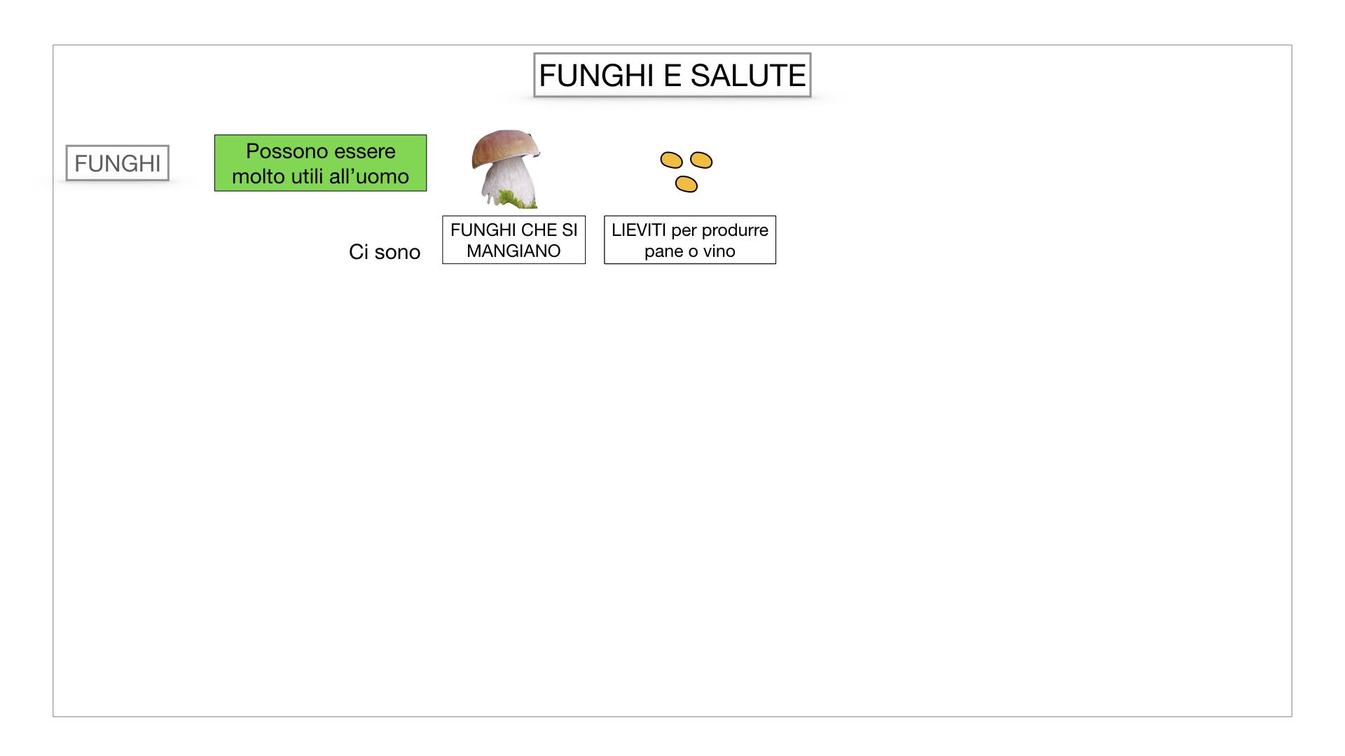 10. i funghi_SIMULAZIONE PARTE2.063