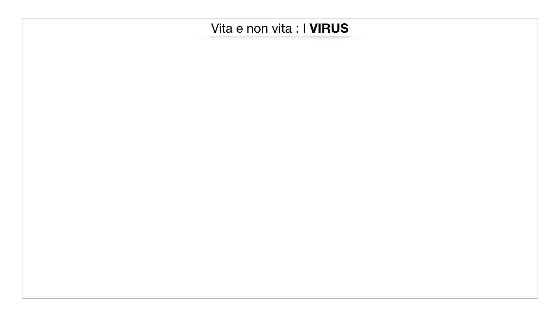 5. VIRUS_SIMULAZIONE.001