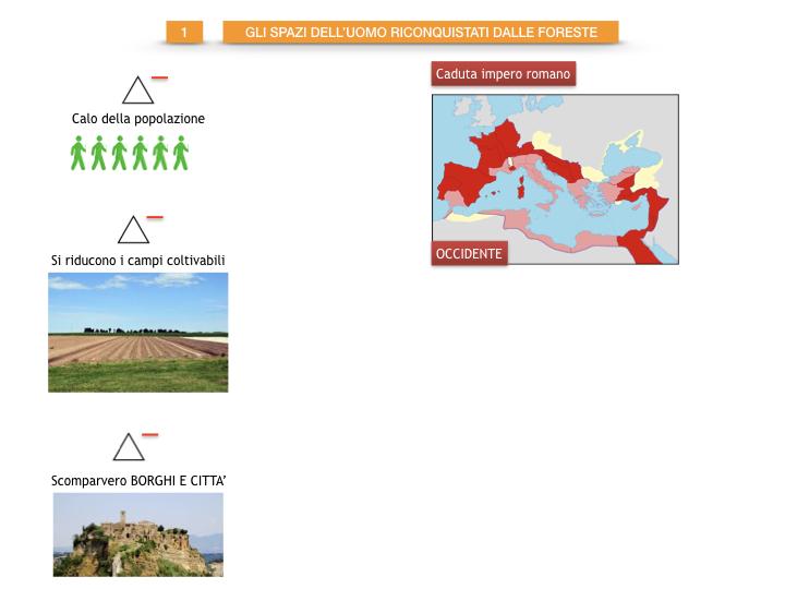 6.STORIA_IL MONDO DELLE FORESTE_SIMULAZIONE.009