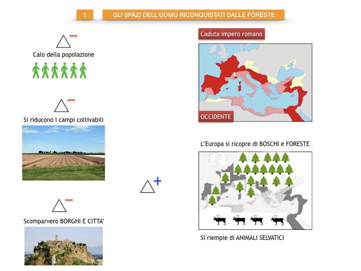 6.STORIA_IL MONDO DELLE FORESTE_SIMULAZIONE.012