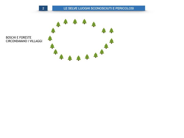 6.STORIA_IL MONDO DELLE FORESTE_SIMULAZIONE.014