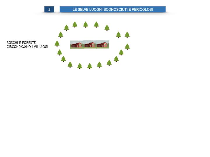 6.STORIA_IL MONDO DELLE FORESTE_SIMULAZIONE.015