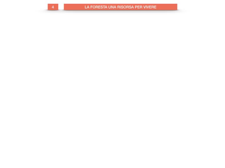 6.STORIA_IL MONDO DELLE FORESTE_SIMULAZIONE.033