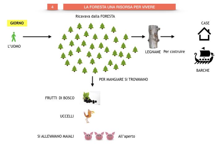 6.STORIA_IL MONDO DELLE FORESTE_SIMULAZIONE.042