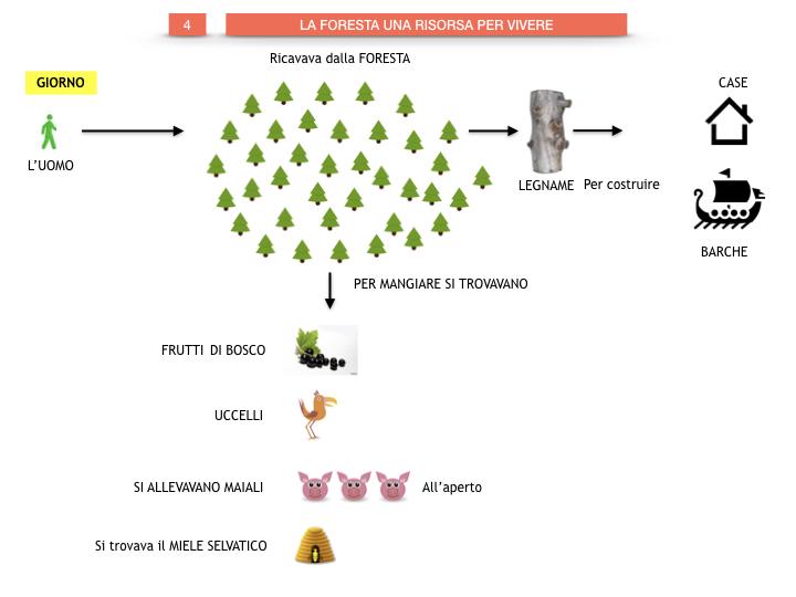6.STORIA_IL MONDO DELLE FORESTE_SIMULAZIONE.043