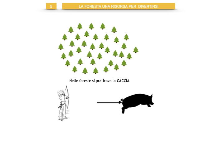 6.STORIA_IL MONDO DELLE FORESTE_SIMULAZIONE.045