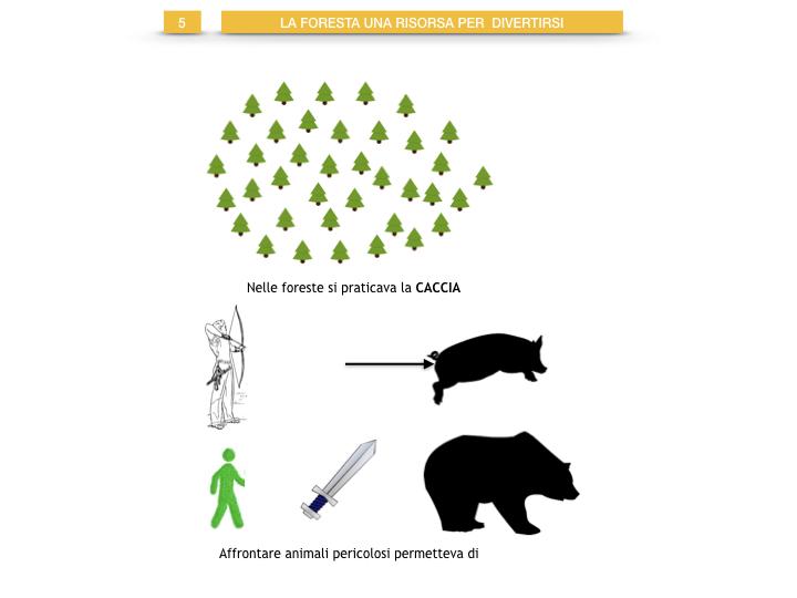 6.STORIA_IL MONDO DELLE FORESTE_SIMULAZIONE.046