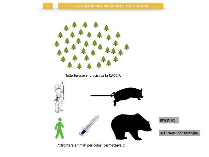 6.STORIA_IL MONDO DELLE FORESTE_SIMULAZIONE.048