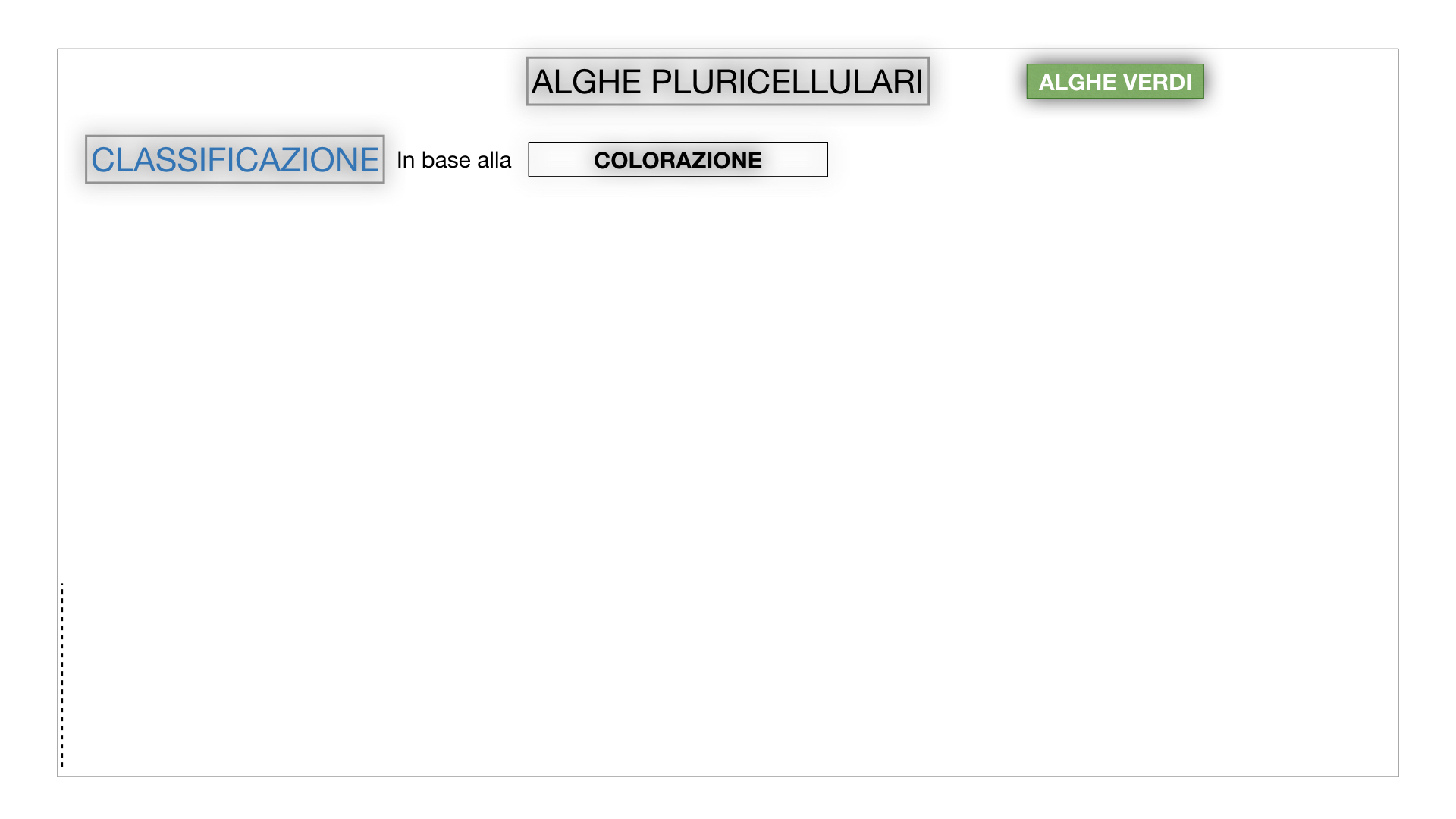8. alghe uni_pluri_cellulari_SIMULAZIONE.044