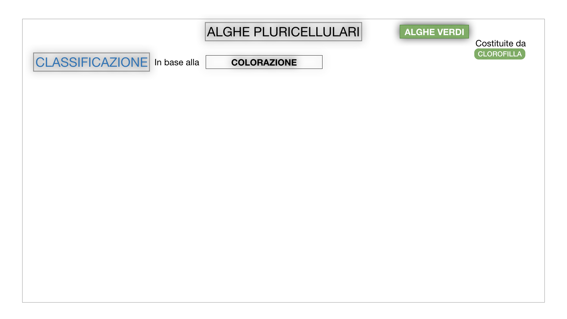 8. alghe uni_pluri_cellulari_SIMULAZIONE.045