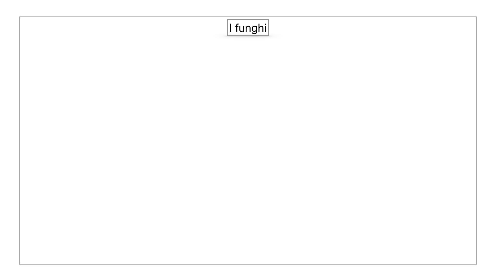 9. i funghi_SIMULAZIONE PARTE1.001