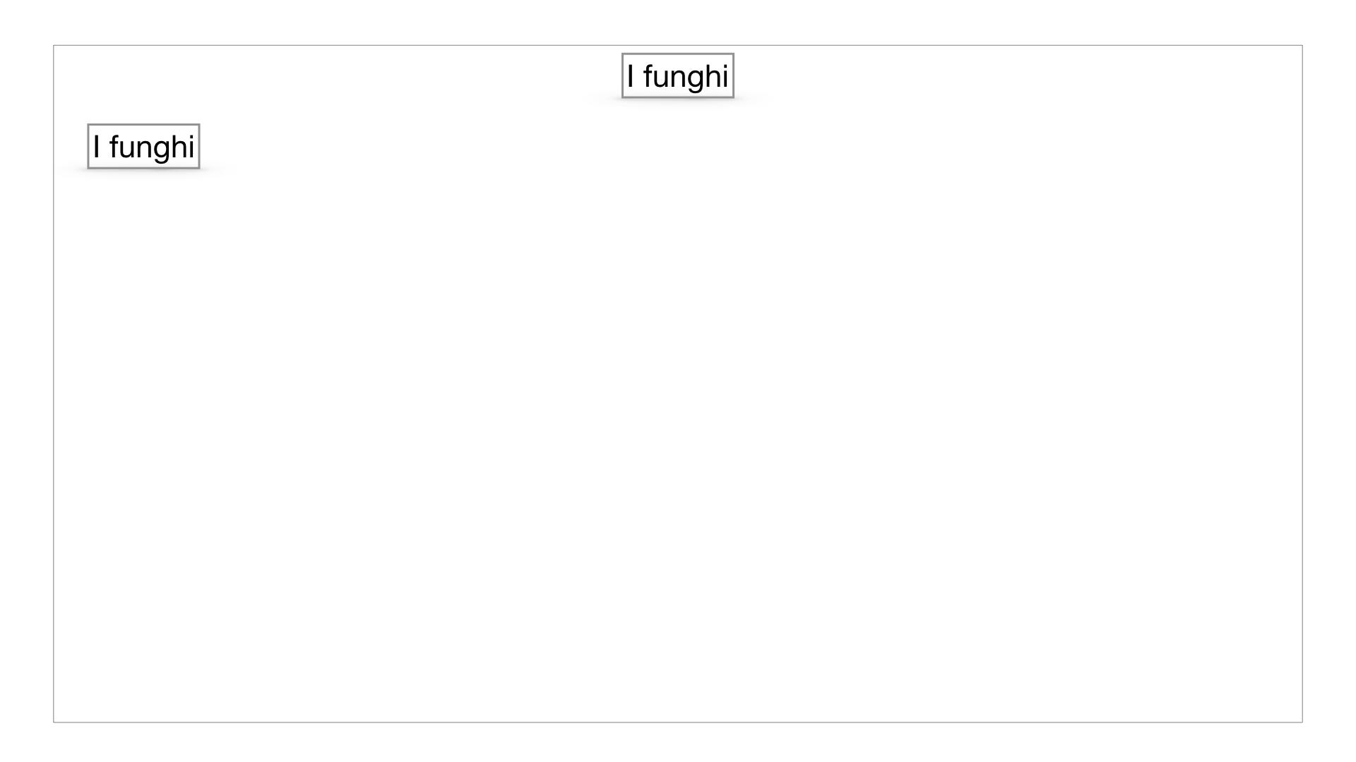9. i funghi_SIMULAZIONE PARTE1.002