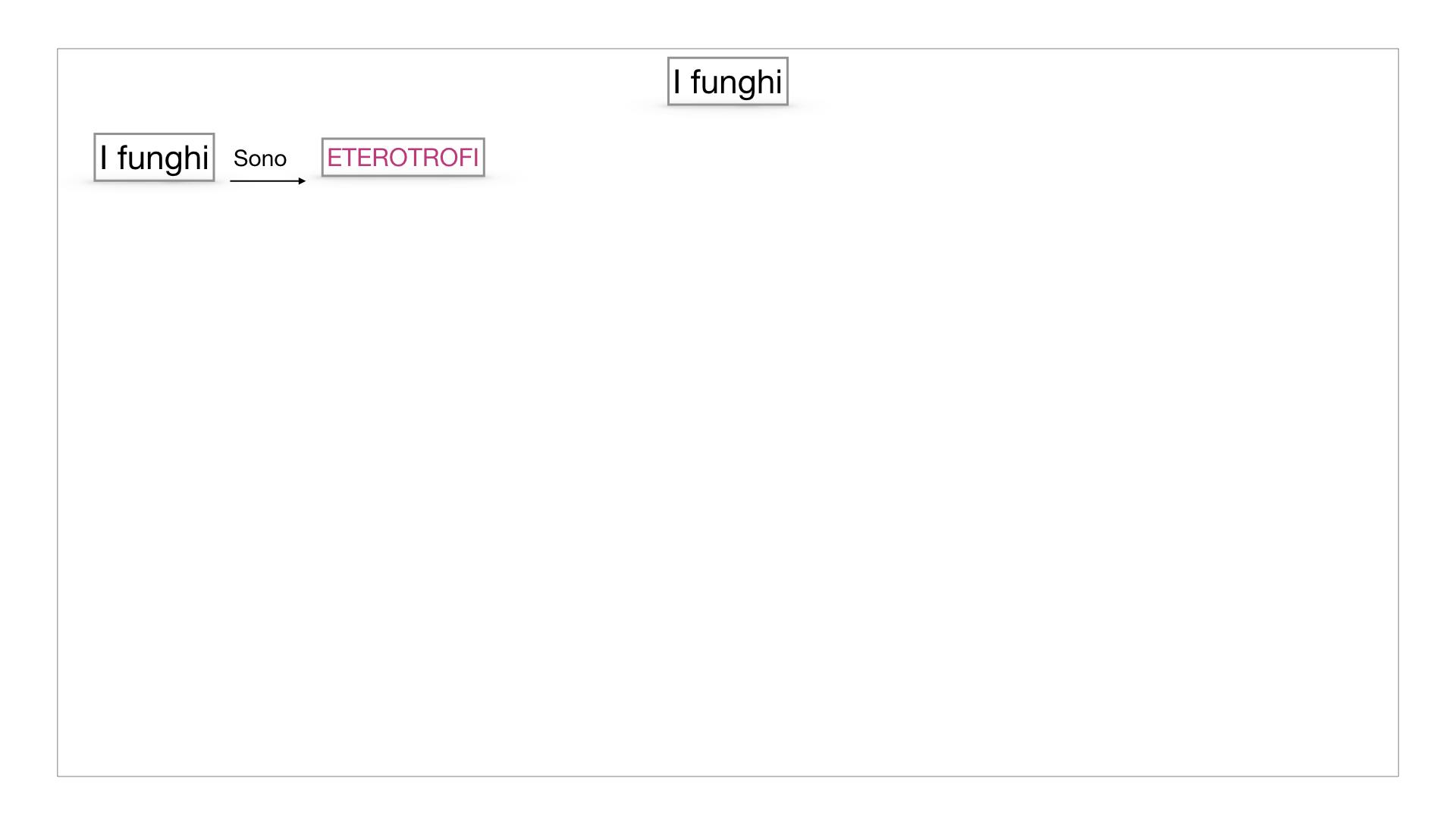 9. i funghi_SIMULAZIONE PARTE1.003